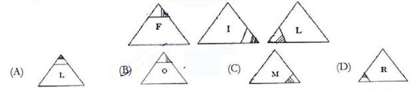 triangle reasoning