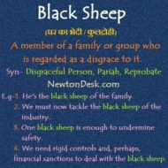 Black Sheep – Disgraceful Person Of His Family