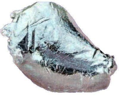 technetium element