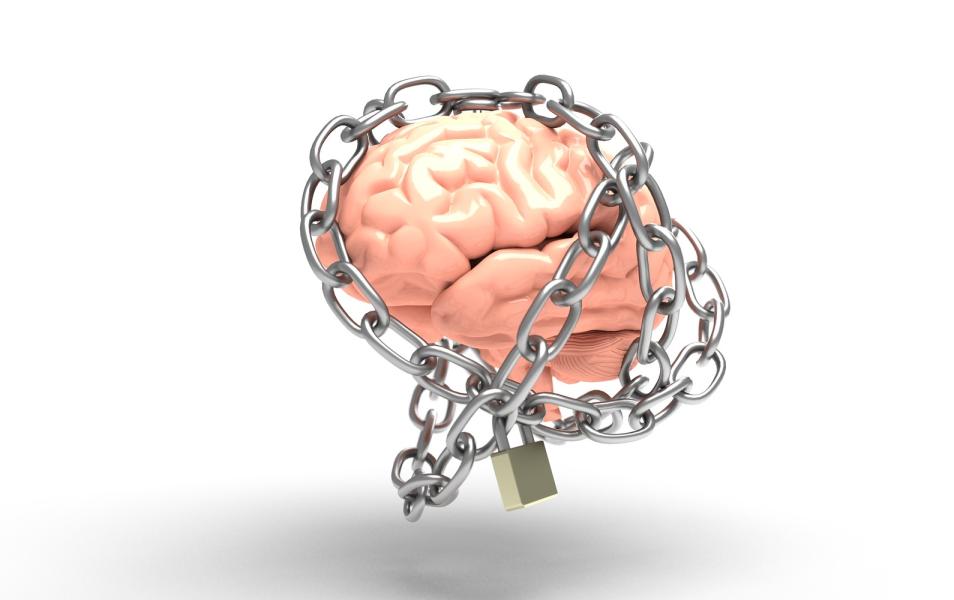 Lock brain memory formation
