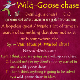 Wild Goose Chase Meaning – A Hopeless Quest