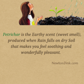 Soil Smell After Rain Is Petrichor Scent