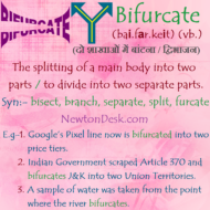 Bifurcate Meaning – To Divide Into Two Separate Parts