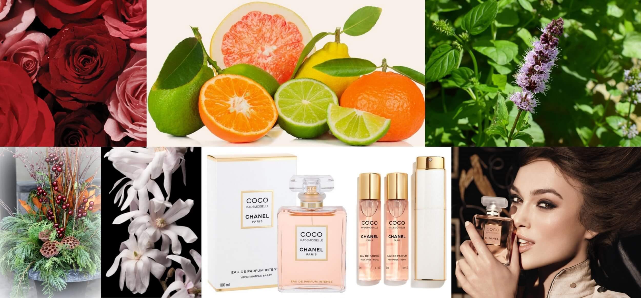 chanel coco mademoiselle edp women perfumes