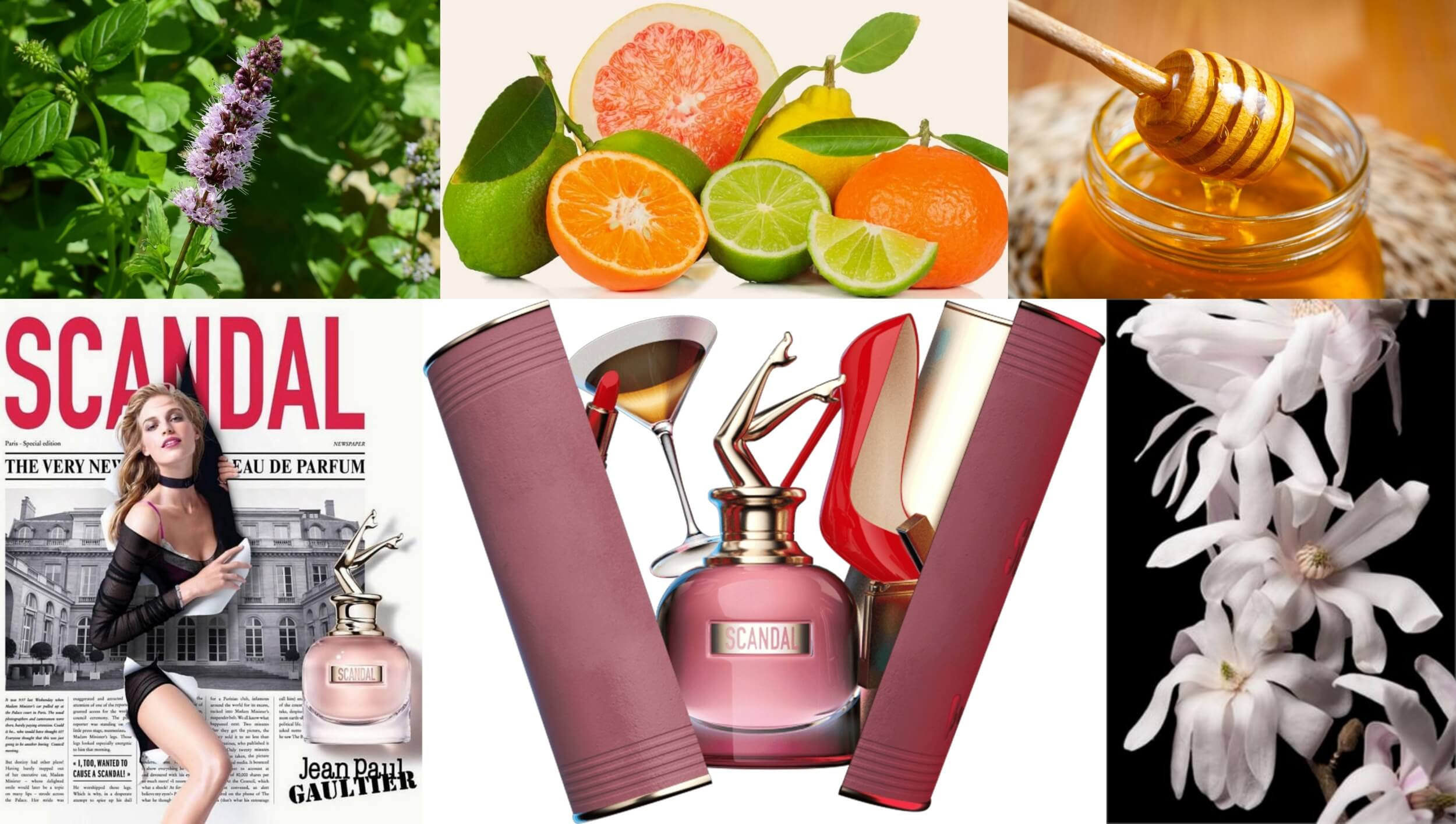 jean paul gaultier scandel women perfumes