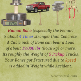 Why Human Bone (Femur) Is 4 Times Stronger Than Concrete