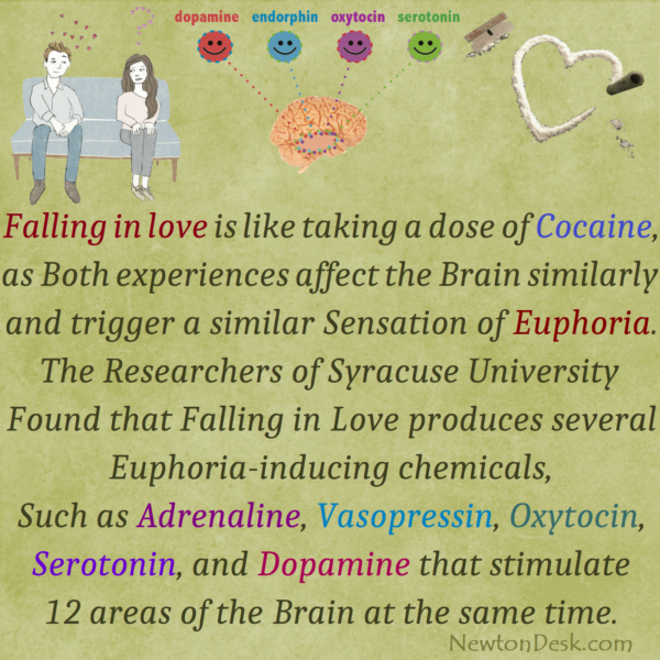 Feeling of Falling in Love is Much Like Cocaine dose