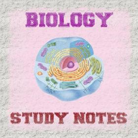 Biology Study Notes (Handwritten) Free PDF