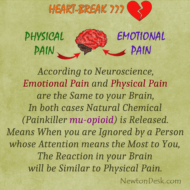 Emotional Pain And Physical Pain Are The Same To Your Brain