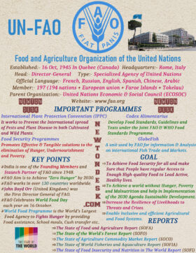 United Nations Food and Agriculture Organization (UNFAO)