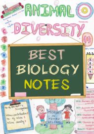 Best Biology Handwritten Color Notes PDF