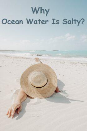 Why Ocean Water Is Salty?