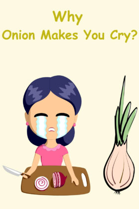 Why Do Onions Make You Cry and How To Prevent It?